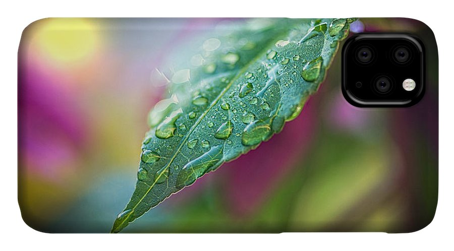 Rain IPhone Case featuring the photograph Raindrops 1 by Bob Orsillo