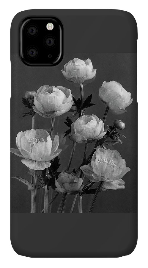 Still Life Of Flowers IPhone 11 Case