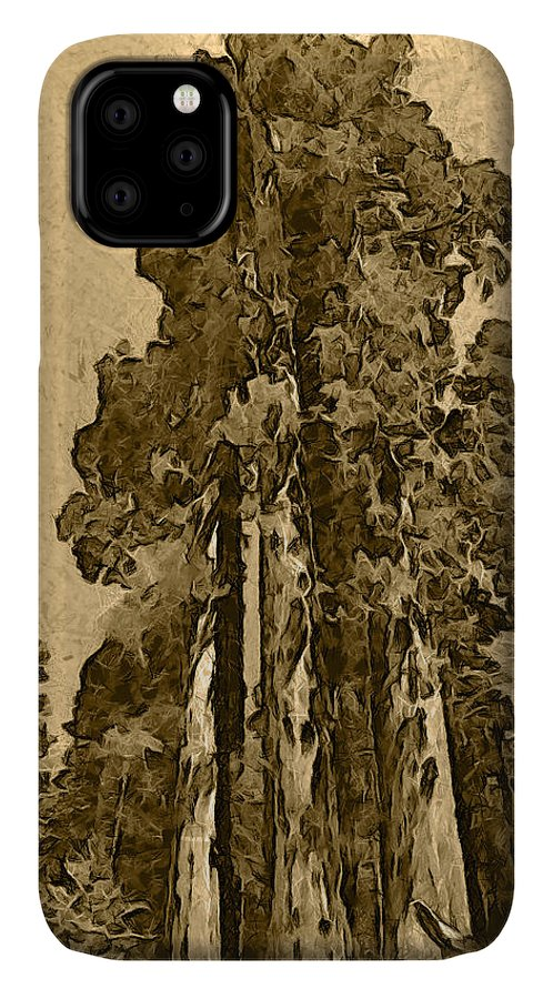Three Giants Of The Forest Abstract IPhone Case featuring the photograph Three Giants Of The Forest Abstract by Barbara Snyder