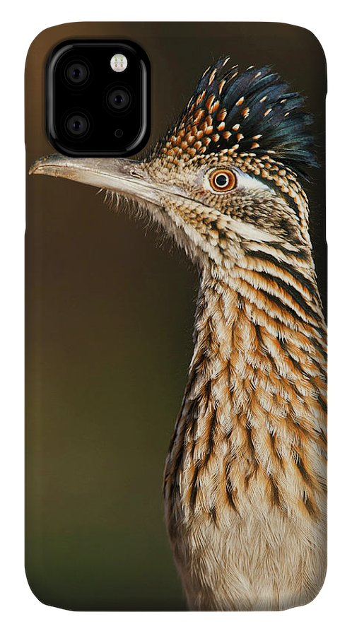 Adult IPhone 11 Case featuring the photograph Greater Roadrunner (geococcyx by Larry Ditto