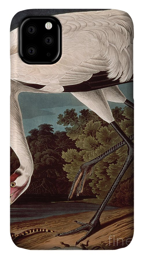 Bird IPhone Case featuring the painting Whooping Crane by John James Audubon