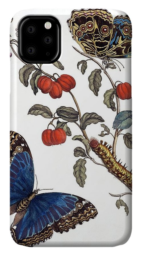 Cherry IPhone Case featuring the photograph Insects Of Surinam by Natural History Museum, London/science Photo Library