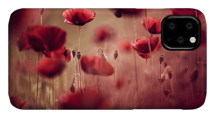 Poppy IPhone Case featuring the photograph Summer Poppy by Nailia Schwarz