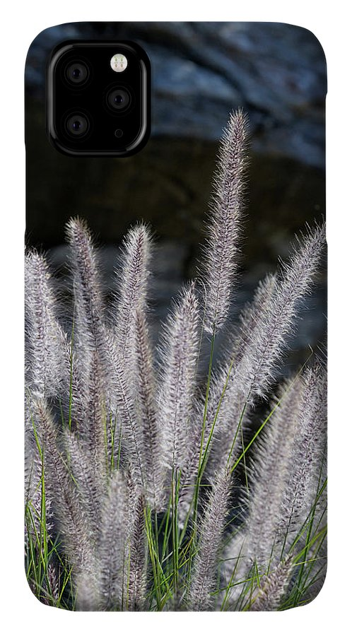Agua Caliente IPhone Case featuring the photograph Usa, California, Palm Springs, Indian by Kevin Oke