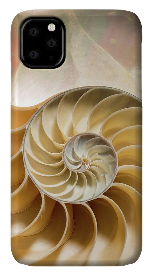 Anatomy IPhone Case featuring the photograph Nautilus Pompilius by Natural History Museum, London