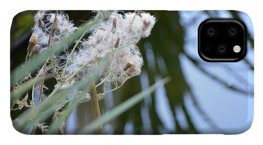 Marsh IPhone Case featuring the photograph All The World Is Fluff And Posture by Laureen Murtha Menzl