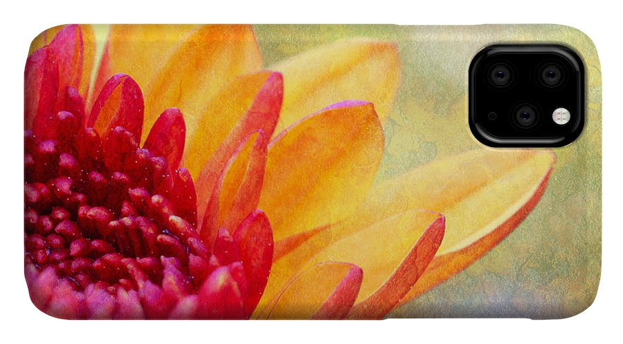 Green IPhone Case featuring the photograph Autumn's Surprise by Heidi Smith