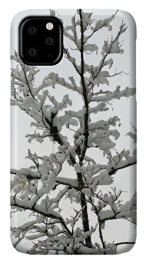Bare Branches IPhone 11 Case featuring the photograph Bare Branches With Snow by Tikvah's Hope