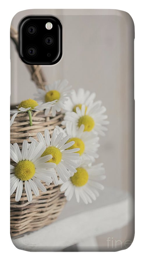 Chair IPhone Case featuring the photograph Basket Full Of Summer Daisys by Edward Fielding