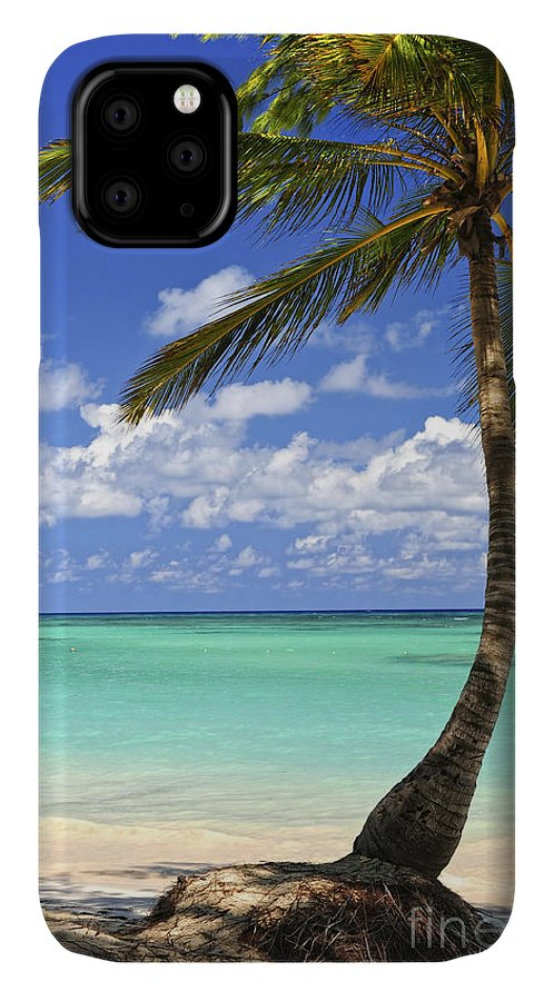 Beach IPhone 11 Case featuring the photograph Beach Of A Tropical Island by Elena Elisseeva