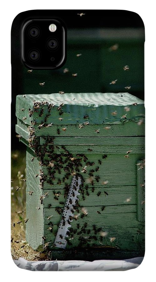 Animal IPhone Case featuring the photograph Beehive by Pascal Broze/reporters/science Photo Library