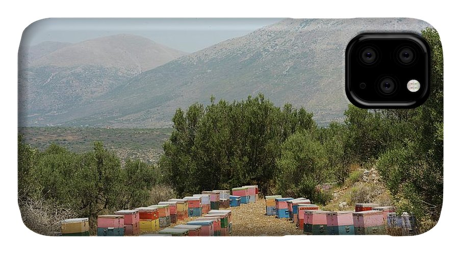 Allotment IPhone Case featuring the photograph Beehives by David Parker/science Photo Library