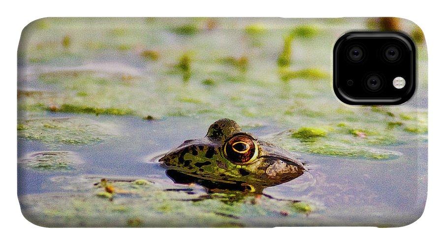 Prairieville IPhone Case featuring the photograph Big Bubba by Scott Pellegrin