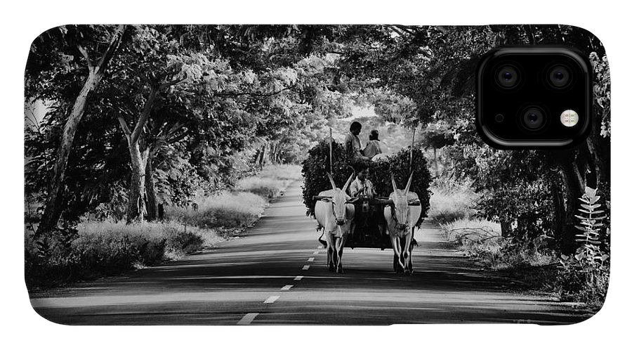 Bullock Cart IPhone Case featuring the photograph Bringing In The Harvest by Tim Gainey