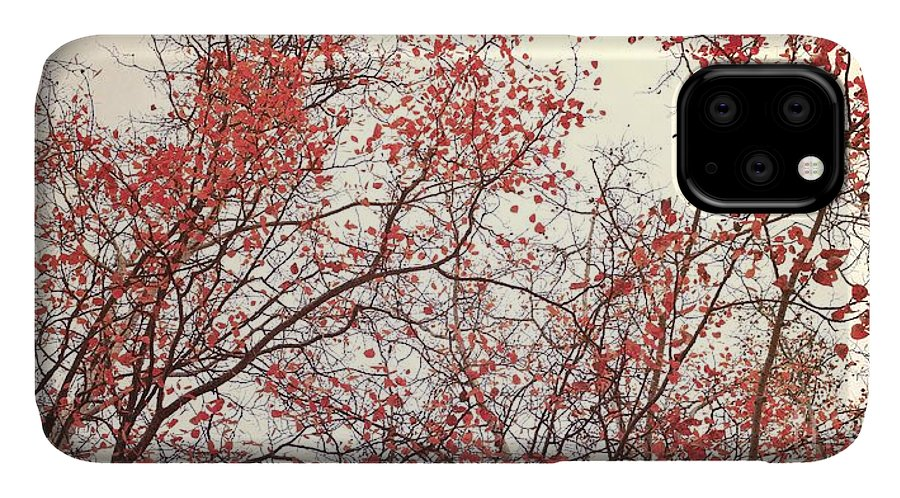 Red IPhone 11 Case featuring the photograph canopy trees II by Priska Wettstein