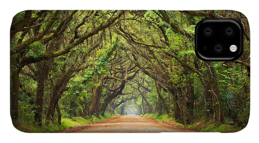 Swamp IPhone Case featuring the photograph Charleston Sc Edisto Island - Botany Bay Road by Dave Allen