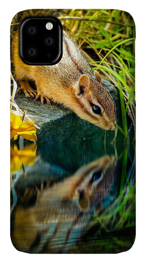 Chipmunk IPhone Case featuring the photograph Chipmunk Reflection by Bob Orsillo