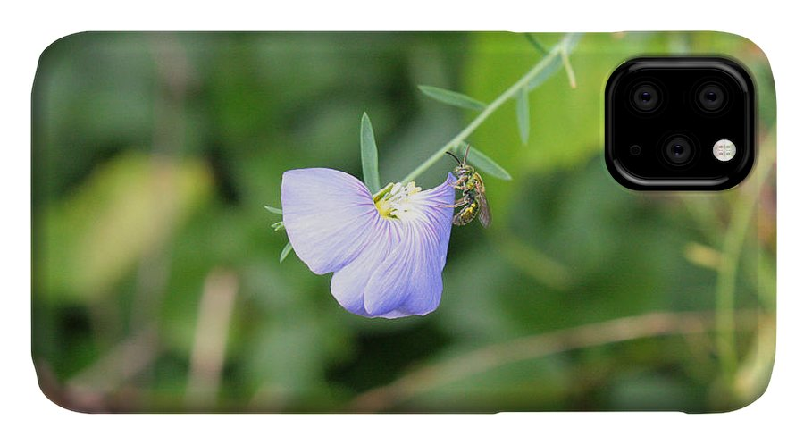 Purple Flower IPhone Case featuring the photograph Color Orchid Bee by Greg Joens