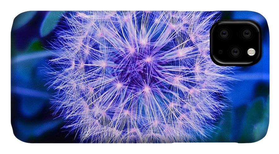 Dandelion. Weed IPhone 11 Case featuring the photograph Cool Dandelion In Purple And Blue by M E Wood