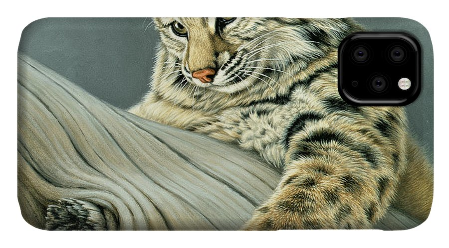 Wildlife IPhone Case featuring the painting Curiosity - young bobcat by Paul Krapf