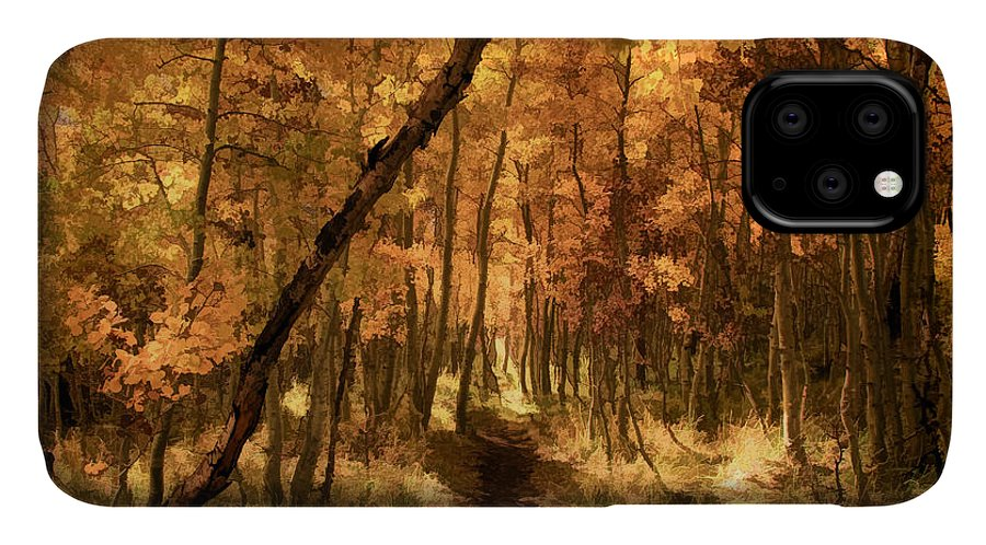 June Lake IPhone Case featuring the photograph Down the Golden Path by Donna Kennedy
