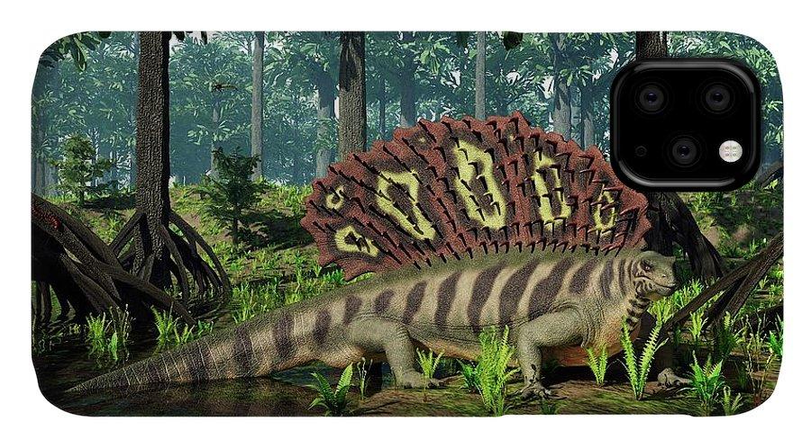 Amphibians IPhone Case featuring the photograph Edaphosaurus Amidst Cordaites by Walter Myers
