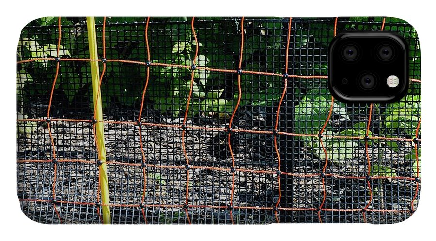 Netting IPhone 11 Case featuring the photograph Electric Fence by Anthony Cooper/science Photo Library