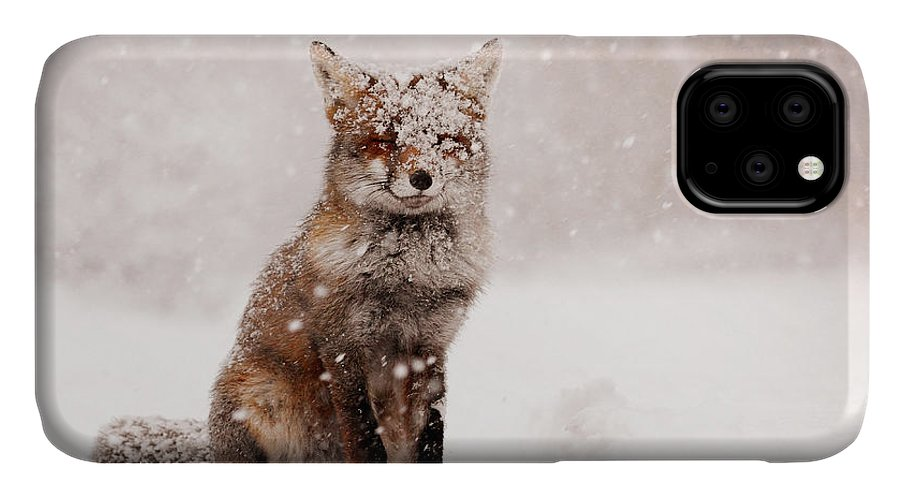 Fox IPhone 11 Case featuring the photograph Fairytale Fox _ Red Fox In A Snow Storm by Roeselien Raimond