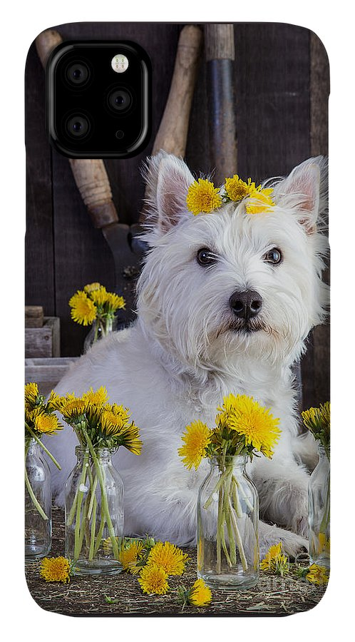 Dog IPhone Case featuring the photograph Flower Child by Edward Fielding