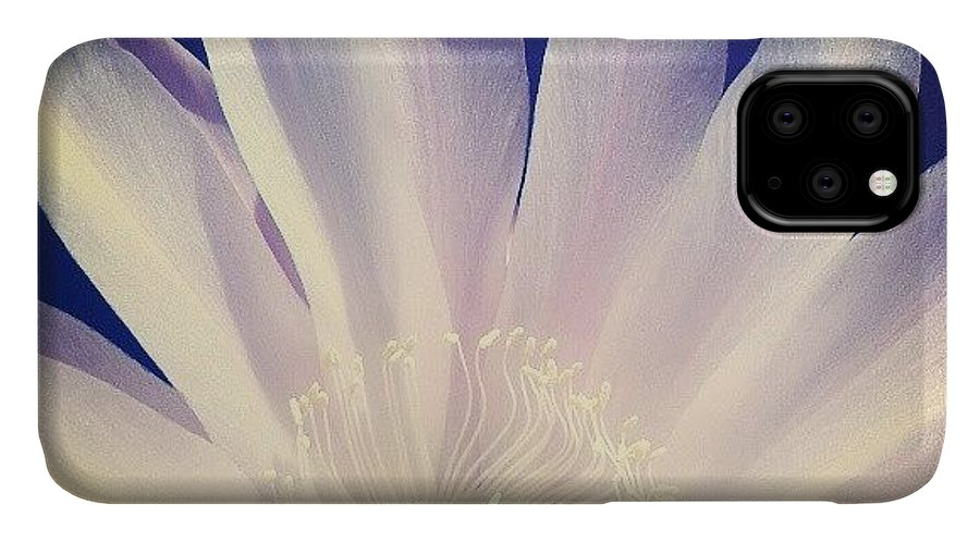 Love IPhone 11 Case featuring the photograph Flower by Emanuela Carratoni
