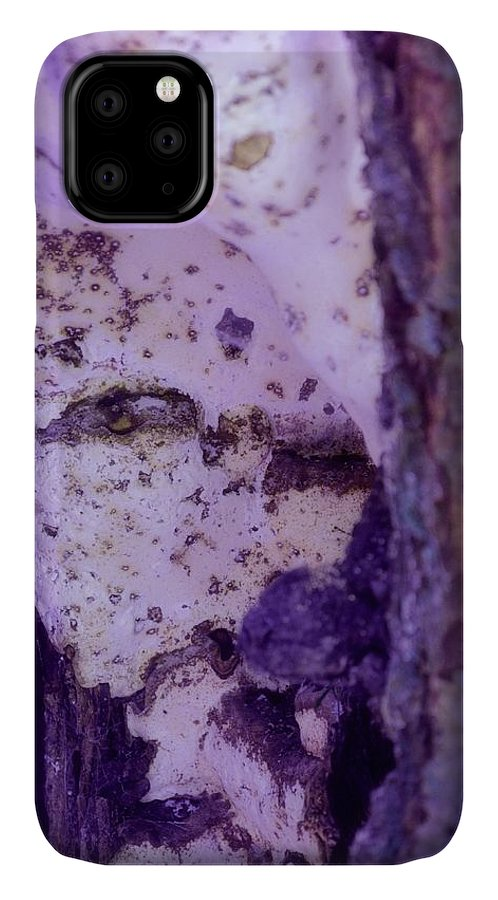 Ghost IPhone Case featuring the photograph Ghost In The Tree by Laureen Murtha Menzl