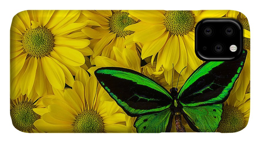 Green IPhone Case featuring the photograph Green Butterfly Resting by Garry Gay