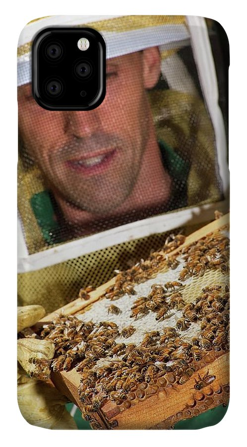Jay Evans IPhone Case featuring the photograph Honey Bee Pathogen Research by Stephen Ausmus/us Department Of Agriculture