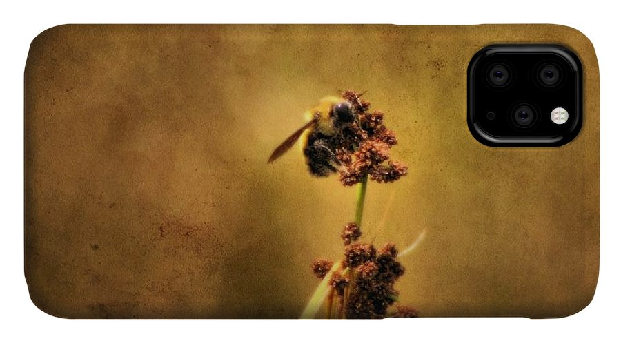 Honeybee IPhone Case featuring the photograph Honeybee by Dan Sproul