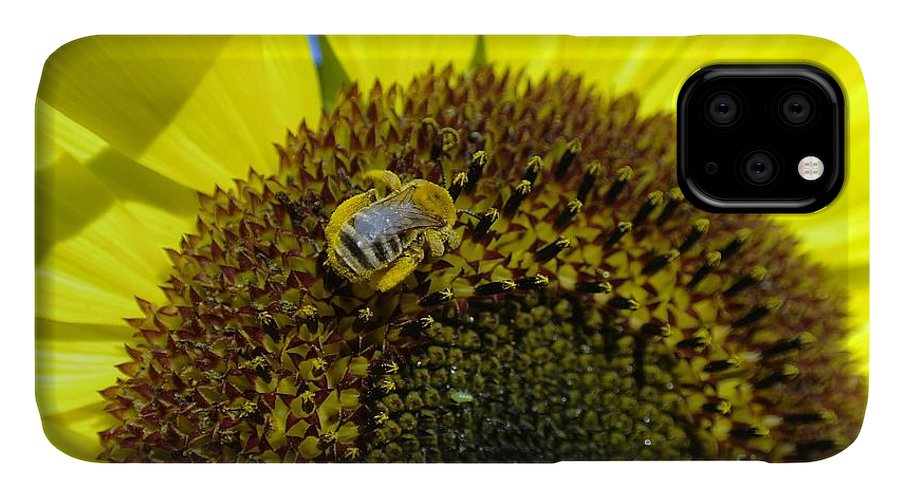 Bees IPhone Case featuring the photograph Honeybee In A Sunflower by Jeff Swan