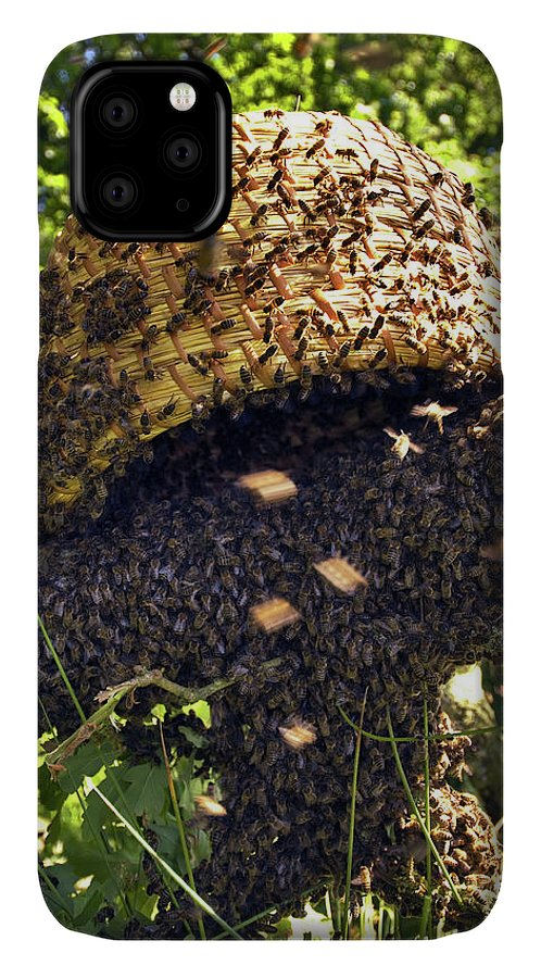Apis Mellifera IPhone Case featuring the photograph Honeybees Swarming by Simon Fraser/science Photo Library