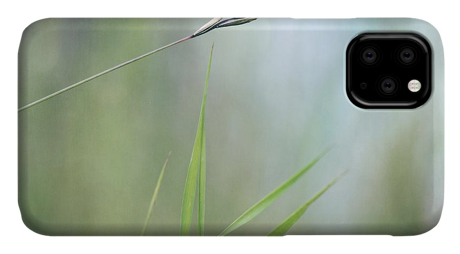 Spike IPhone Case featuring the photograph I will hold you by Priska Wettstein