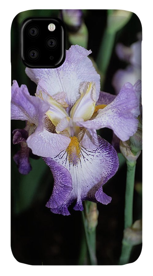 Iris 'spinning Wheel' IPhone Case featuring the photograph Iris Flower by Adrian Thomas/science Photo Library