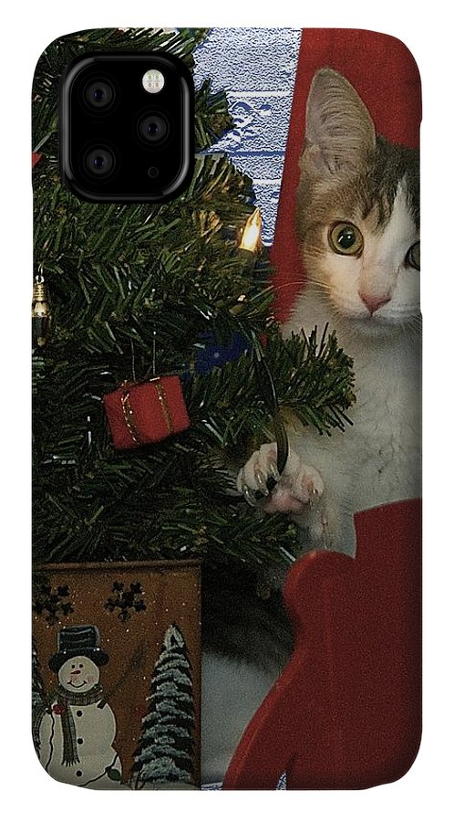 Animals IPhone 11 Case featuring the photograph Kitty Says Happy Holidays by Thomas Woolworth