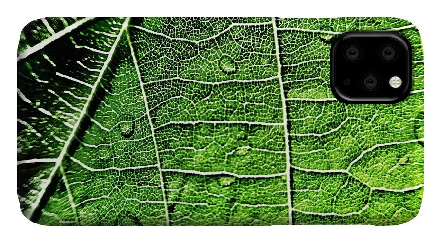 Leaf IPhone 11 Case featuring the photograph Leaf Abstract - Macro Photography by Marianna Mills