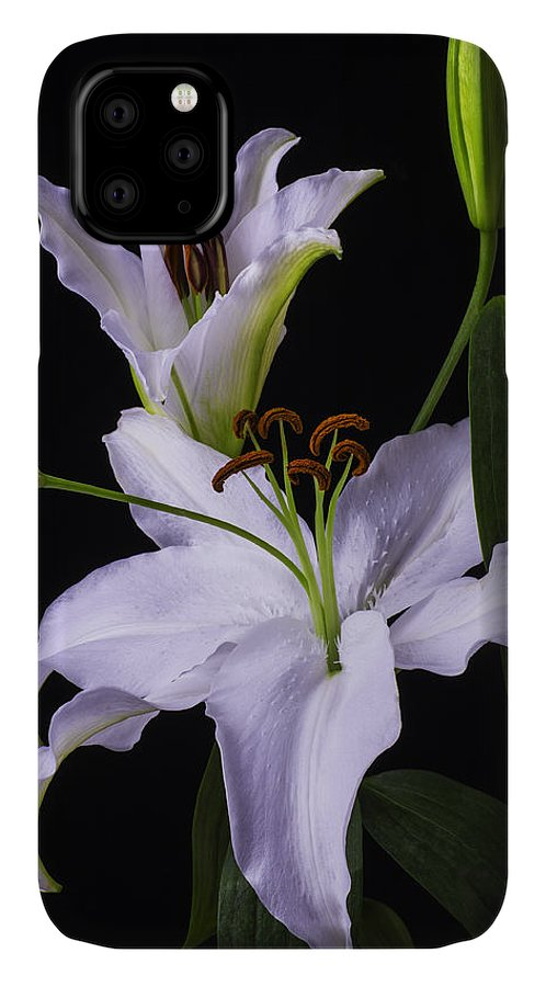 White Tiger Lily IPhone Case featuring the photograph Lily's In Bloom by Garry Gay