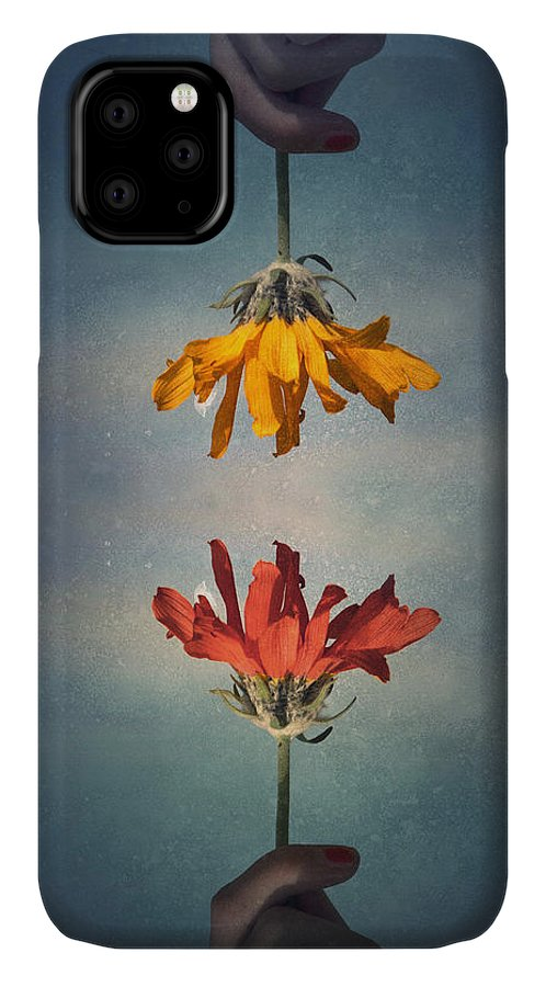 Middle Ground IPhone Case featuring the photograph Middle Ground by Tara Turner