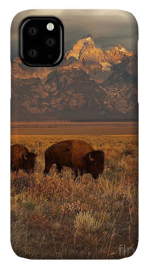 Grand Teton IPhone 11 Case featuring the photograph Morning Travels In Grand Teton by Sandra Bronstein