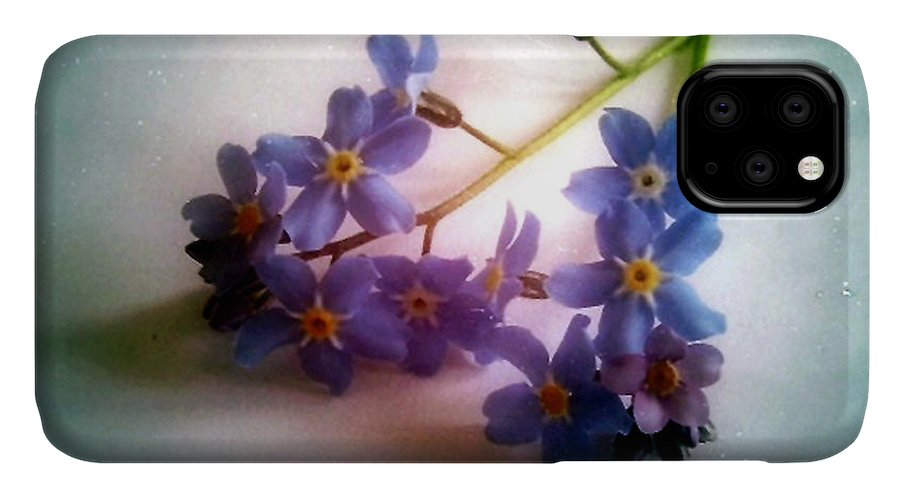 Flower IPhone 11 Case featuring the photograph Myosotis Forget Me Not by Vix Edwards