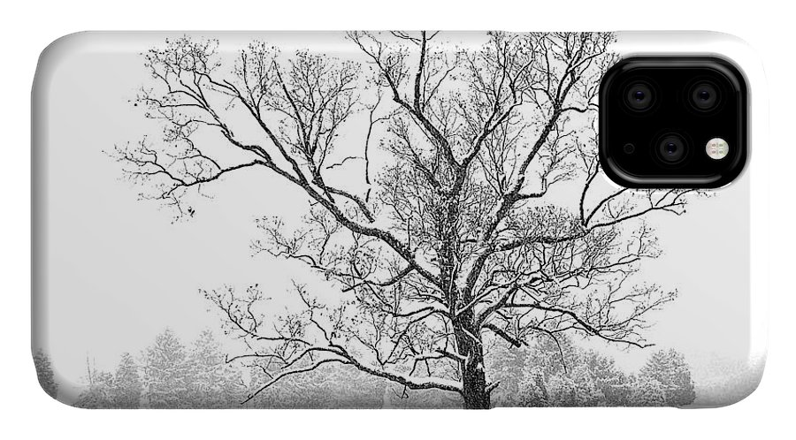 Landscape IPhone Case featuring the photograph Old Tree In Snowstorm by Richard Patrick