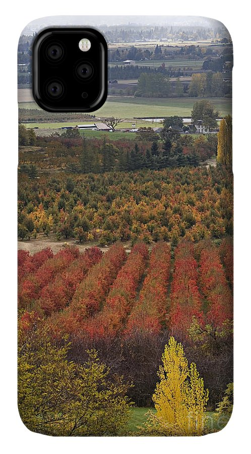 Agriculture IPhone Case featuring the photograph Orchards by Sean Bagshaw