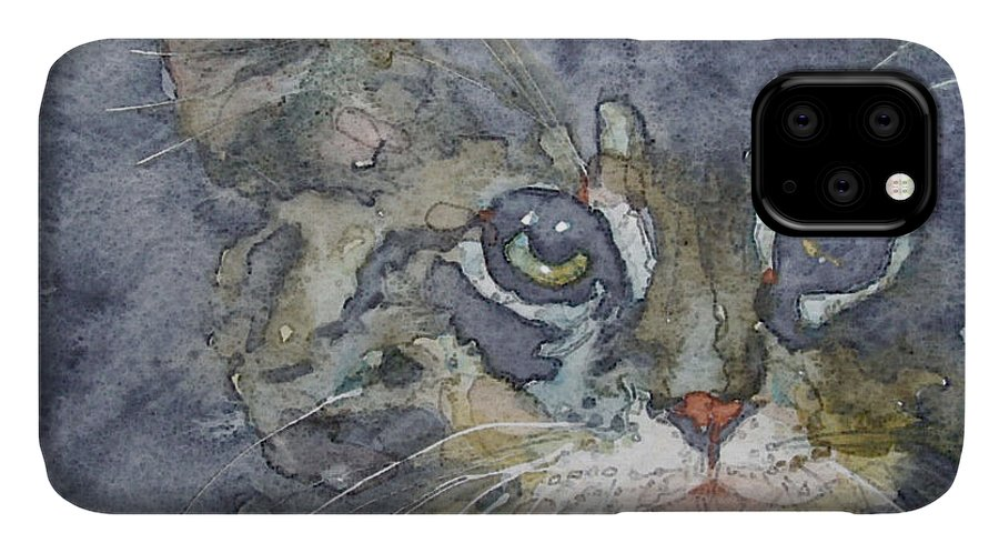 Tabby IPhone Case featuring the painting Out The Blue You Came To Me by Paul Lovering