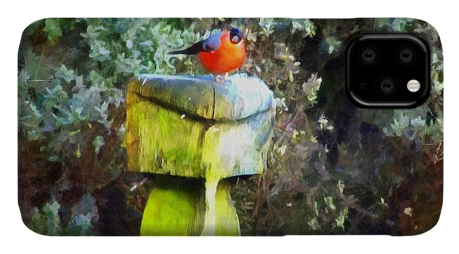 Art IPhone 11 Case featuring the painting Painted Bullfinch S2 by Vix Edwards
