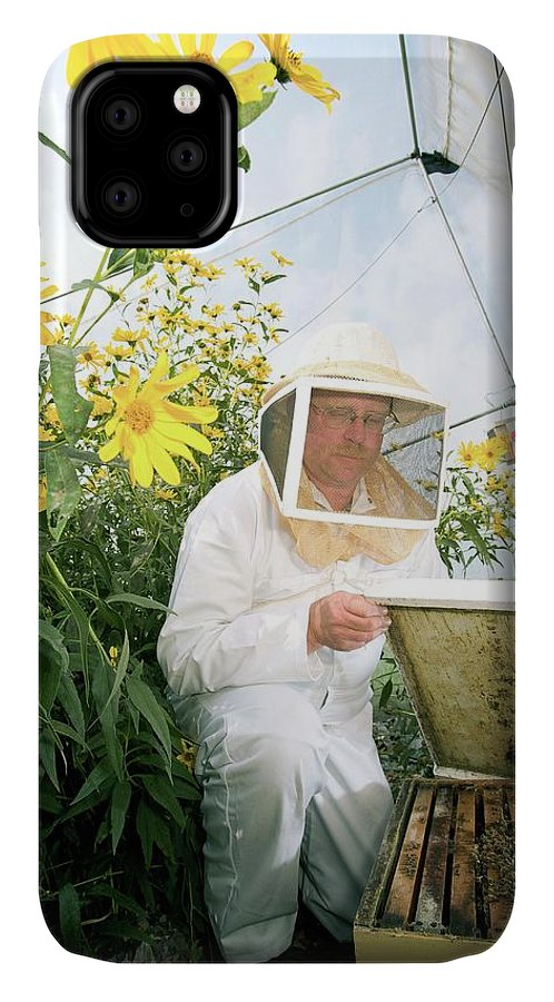 Honey Bee IPhone Case featuring the photograph Plant Pollination by Peggy Greb/us Department Of Agriculture/science Photo Library