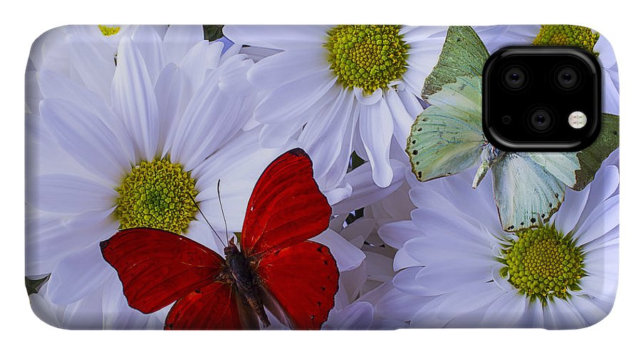 Beautiful IPhone Case featuring the photograph Red And Green Butterflies by Garry Gay